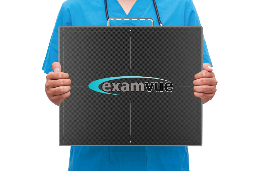 Veterinary Ultrasound and Digital Radiography
